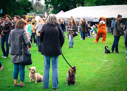 Dog owners and dogs alike were getting ready for the dog show